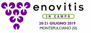 enovitis_in_Campo (002)